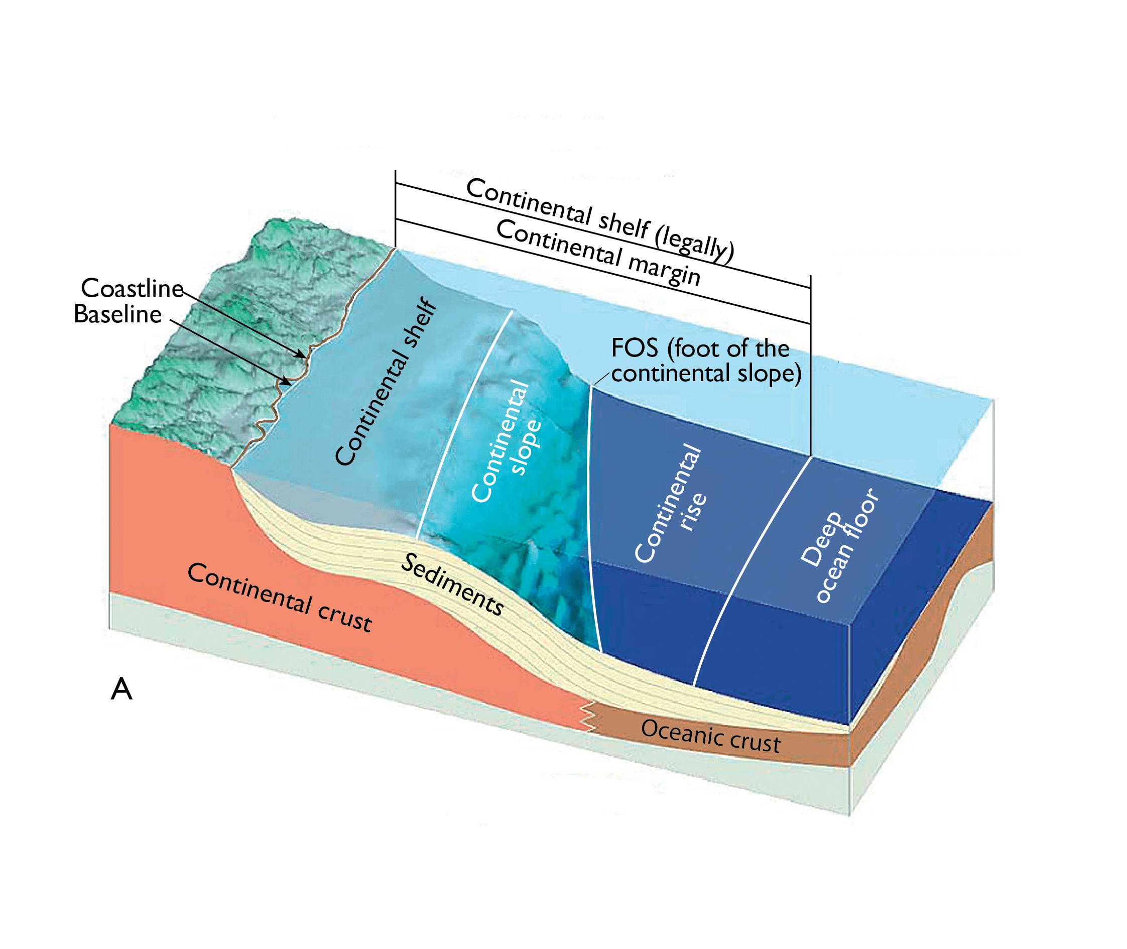 The figure shows a cross section of a type of continental margin that best corresponds with the conditions in the Atlantic Ocean.