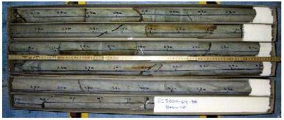 Den længste kerne er 5m lang, og er en basaltkerne fra Bill Bailey Banke.