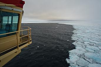 I åbent vand efter fem uger i isen. Foto: Benjamin Hell