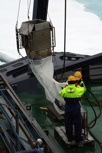 Planktonfiskerne tømmer deres net. Foto: Margareta Osin.