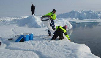 Steffen hjælper Kajsa med at trække net og fange vandlopper. Foto: Leif Toudal Pedersen.
