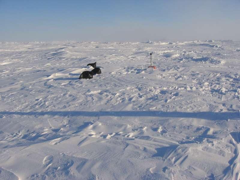 Besøg ved sprængladningen ved position IS11. Alle tre affaldssække med sne, der bruges som markering, ses tydeligt. Til højre ses den lille røde satellitsender, der hele tiden sender sin position til Alert. Rullen med sprængsnor måtte vi grave fri fra sneen. Den forbinder sprængladningerne, der hænger 100 meter nede i havet under isen, med overfladen. Det er kun den vi skal have fat i for at affyre ladningerne