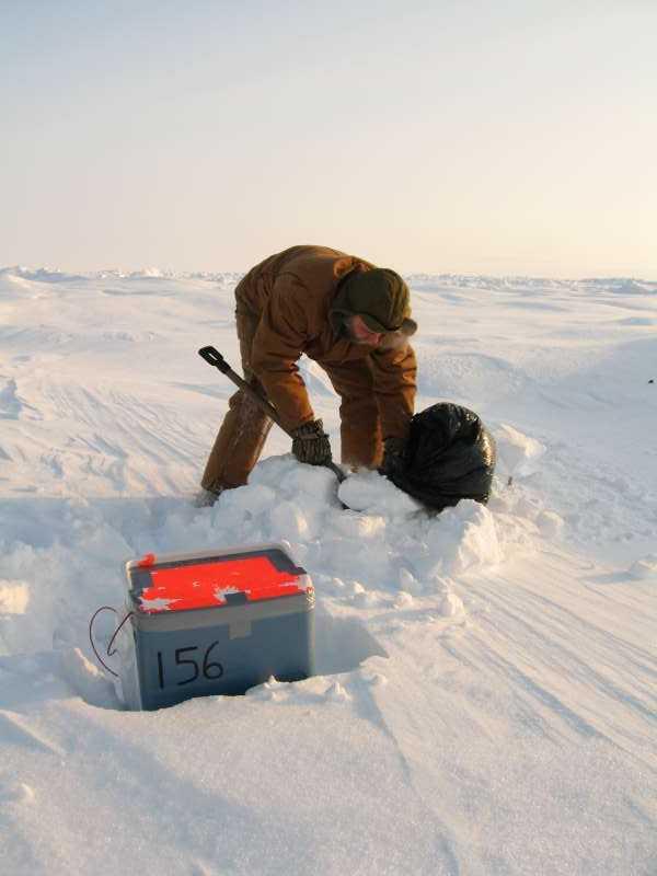 Jørgen Skafte er i fuld gang med at installere en receiver på isen. Først har han gravet et hul i sneen for at få instrumentet til at stå på den faste is. Nu er han i gang med at fylde affaldssækken op med sne, så den kan bruges som en sort markering af positionen.